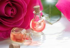Rose flower and essential oil. Spa and aromatherapy.  royalty free stock image