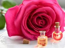 Rose flower and essential oil. Spa and aromatherapy.  stock image