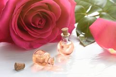 Rose flower and essential oil. Spa and aromatherapy.  stock photos