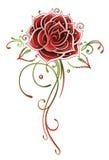 Rose, flower Royalty Free Stock Photos