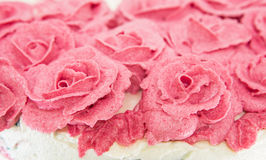 Rose Flower Frosting II royalty-vrije stock afbeelding