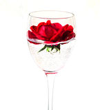 Rose flower in a glass Stock Photo