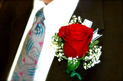Groom wearing a red rose Boutonniere Stock Photo