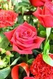 Rose Flower-inmarket Stockfotos