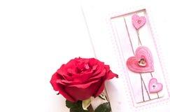 Rose flower, isolated on white Stock Image