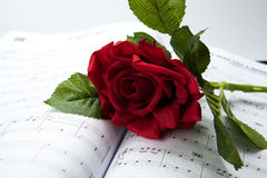 Rose flower on note book Royalty Free Stock Photo