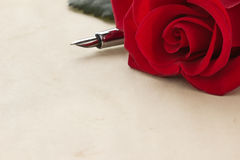 Rose flower on parchment Royalty Free Stock Image