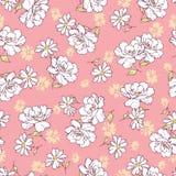 Rose flower pattern, Royalty Free Stock Image