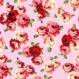 Rose flower pattern, Royalty Free Stock Images