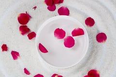 Rose Flower Petals Arkivfoton