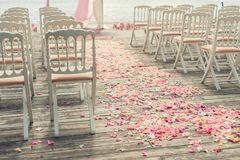 Rose flower petals scattered on a wooden floor. Near the chairs at a wedding ceremony Stock Images