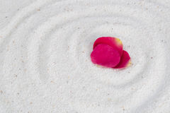 Rose flower petals on the white sand. Spa image spiritual balance and healthy lifestyle, rose flower petals on the white sand stock image