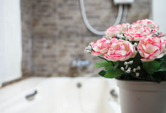 rose flower pot Stock Image