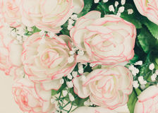 rose flower pot Royalty Free Stock Photos