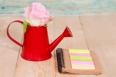 Rose flower in a red watering can Stock Photo