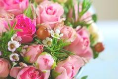 Rose flower romance background Stock Photos