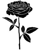 Rose flower silhouette Royalty Free Stock Photo