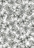 Rose Flower sketch bouquet seamless pattern Stock Images