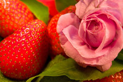 Rose flower and strawberry Stock Photo