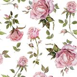 Rose flower on a twig. Seamless floral pattern. Watercolor painting. Hand drawn illustration.  stock illustration