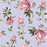 Rose flower on a twig. Seamless floral pattern. Watercolor painting. Hand drawn illustration. Rose flower on a twig. Seamless floral pattern.  Watercolor Stock Photos