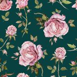 Rose flower on a twig. Seamless floral pattern. Watercolor painting. Hand drawn illustration. Rose flower on a twig. Seamless floral pattern.  Watercolor Royalty Free Stock Images