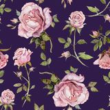 Rose flower on a twig. Seamless floral pattern. Watercolor painting. Hand drawn illustration.  royalty free illustration