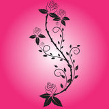 Rose flower vector royalty free stock image