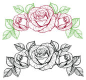Rose flower vignette Royalty Free Stock Images