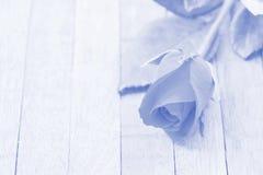 Rose flower vintage. Rose on wood blue background Royalty Free Stock Photos