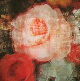 Rose flower watercolor art paint with paper texture Royalty Free Stock Images