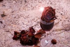 The rose flower in the wine glass royalty free stock image