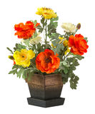 Rose flower in wood bucket Royalty Free Stock Photo