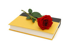 Rose flower and yellow book Royalty Free Stock Photos