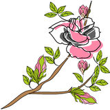Rose flowers. Universal template for greeting card, web page, background Stock Images