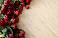 The rose flowers arranged with copyspace for your text Stock Image