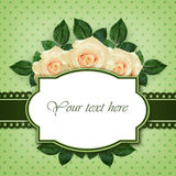 Rose flowers arrangement and frame Stock Photography
