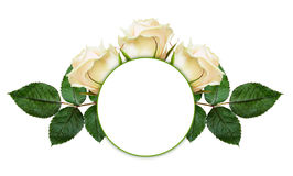 Rose flowers arrangement and frame Stock Image