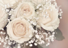 Rose flowers bouquet Stock Images