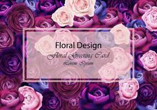 Rose flowers card background blue and violet colors Vector. Floral design trendy template. Rose card flowers background blue and violet colors Vector. Floral Stock Photos