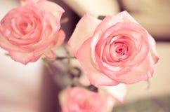 Rose Flowers cor-de-rosa na tabela Imagens de Stock Royalty Free