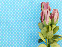 Rose flowers with craft paper on blue polka dot background Stock Photography