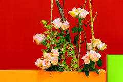 Rose flowers decoration background Stock Photography