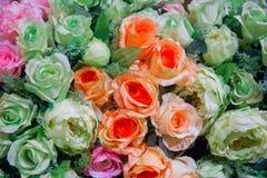 Rose Flowers Field Lizenzfreies Stockbild