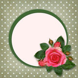 Rose flowers and frame Stock Photos