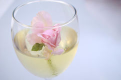 Rose flowers in glass bowl with wine Stock Photography