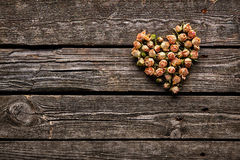 Rose flowers in a heart shape Stock Photos