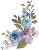 Rose flowers illustration Royalty Free Stock Image