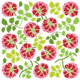 Rose flowers and leaves ornament. Floral ornament with rose flowers and leaves. Rose decoration in red and green colors on white background. Square pattern Royalty Free Stock Photography