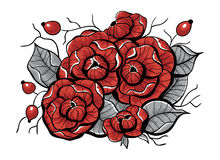 Rose flowers, rosehips and leaves Royalty Free Stock Photography
